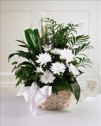 Peaceful Garden™ Basket by US Funeral Flowers