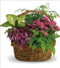 Secret Garden Basket by US Funeral Flowers